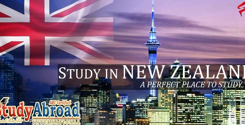 study in new zeeland