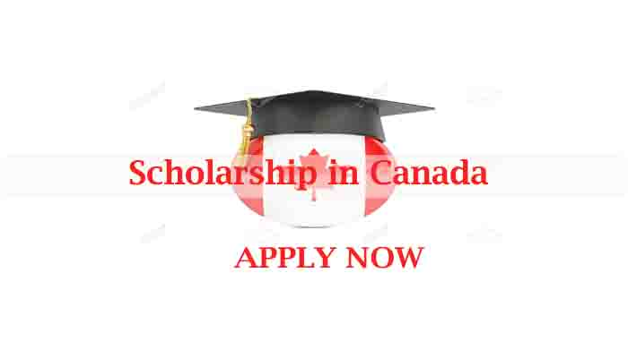 scholarship for Ethiopian students in canada