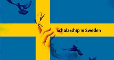 full scholarship in sweden