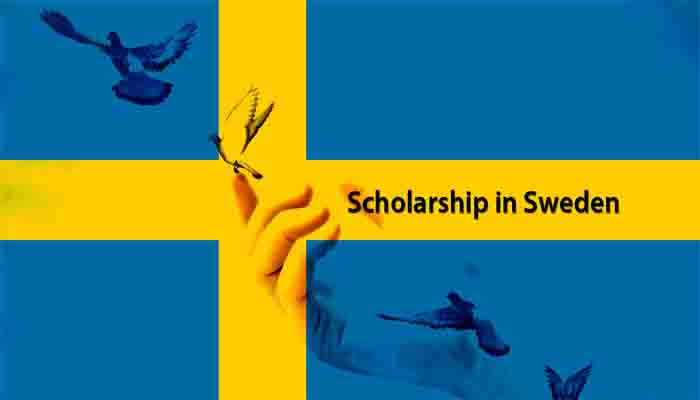 full scholarship in sweden