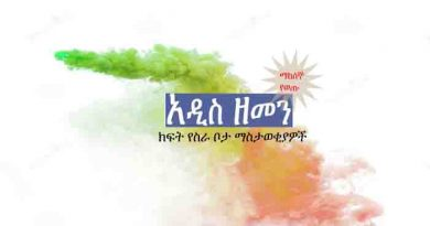 Addis zemen vacancy